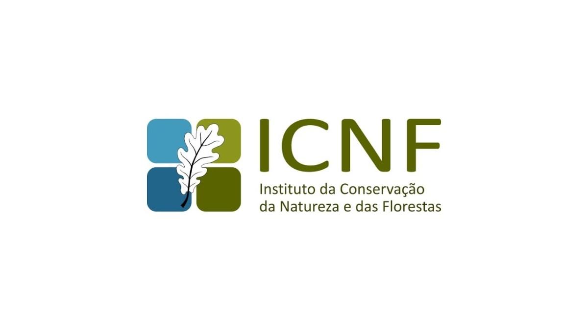 Instituto da Conservação da Natureza e das Florestas tem 25 vagas em aberto